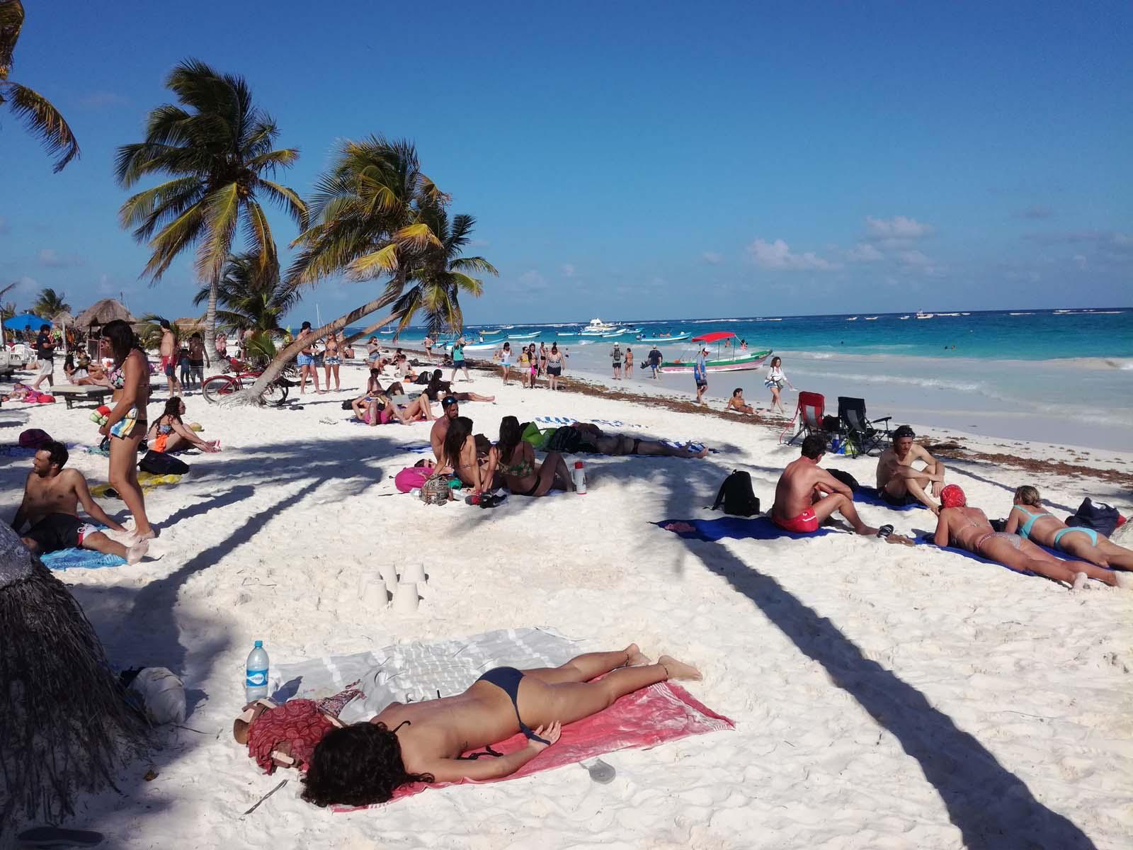 Cote yucatan