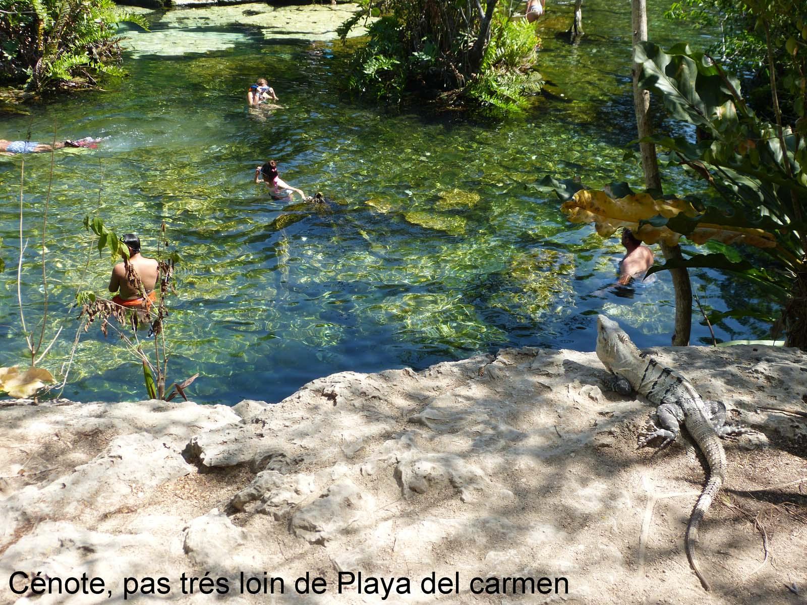 Cote yucatan, cenote azul