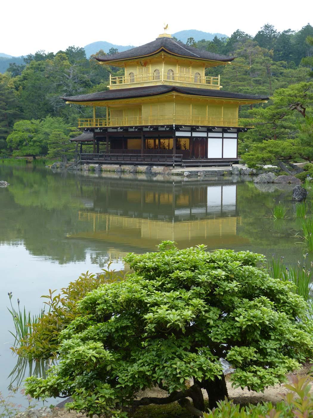 Kyoto - Temple de l'or